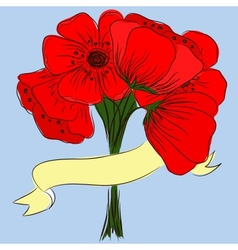 Hand drawing bouquet of poppies vector