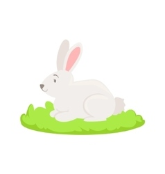 Rabbit Farm Animal Cartoon Farm Related Element On vector image