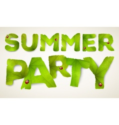 Summer Party words made from green leaves vector image