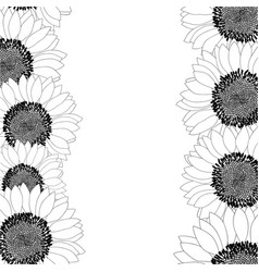 sunflower border outline vector image