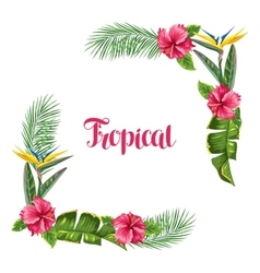 Frame with tropical leaves and flowers Palms vector image