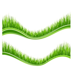Two waves of green grass vector image vector image