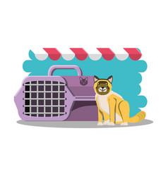 cat with cage icon vector image