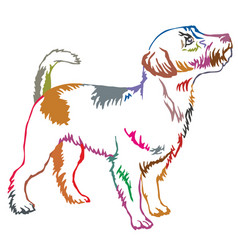 colorful decorative standing portrait of jack vector image