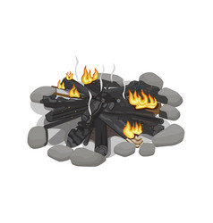 dark burnt firewood with weak flame on white vector image