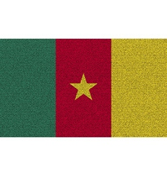 Flags cameroon on denim texture vector
