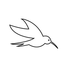 hummingbird line icon outline sign linear vector image