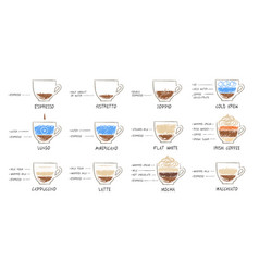 sketches set of coffee recipes vector image