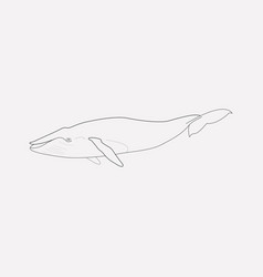 whale icon line element of vector image