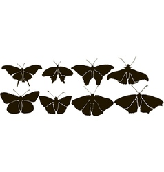 Set Butterflys Silhouette vector image vector image