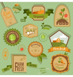 Eco labels vegetables vector image