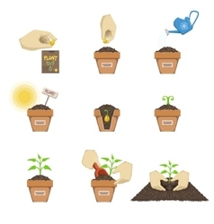 Planting The Seed Sequence vector image