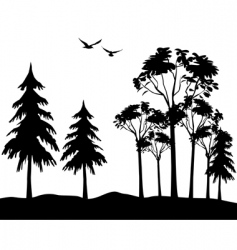 tree wood vector image vector image