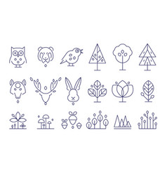 forest set flora and fauna animals and plants in vector image vector image
