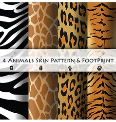 Animals Skin Pattern and Footprint vector