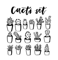 Cactus and succulent hand drawn set doodle vector
