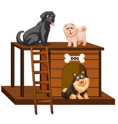 Dog house with cute dogs isolated vector