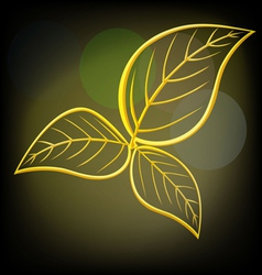 Gold leaves vector image vector image