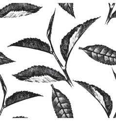 hand drawn seamless pattern with tea leafs vector image