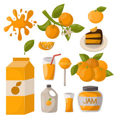 Ripe orange products fruits citrus slices sweet vector