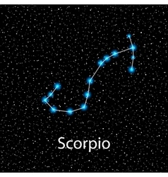 Scorpio Zodiac sign bright stars vector