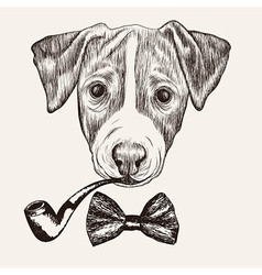 Sketch Jack Russell Terrier Dog with bow tie and vector