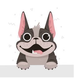 A french bulldog in a flat style vector