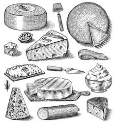 cheese set slices mascarpone bleu de gex edam vector image