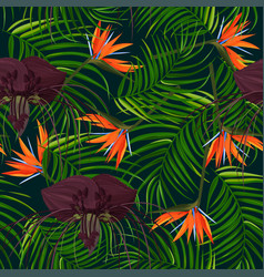 Dark purple tacca flower and strelizia background vector