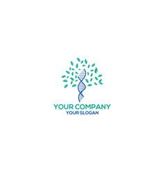 Dna tree logo design vector