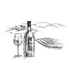 hand drawn wine bottle and glass vector image