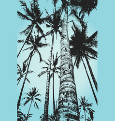 Palms surf vector