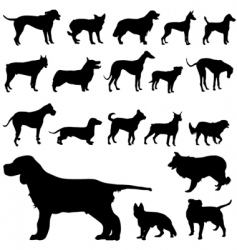 Set of dog vector
