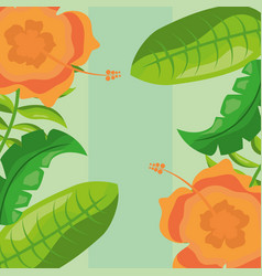 tropical leaves orange flowers foliage nature vector image
