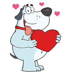 Gray Fat Dog Holding Up A Red Heart vector image vector image