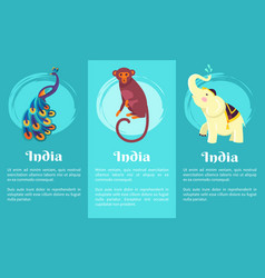 animal symbols of india on set of posters vector image