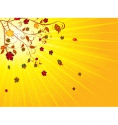 autumn tree and leaves vector image