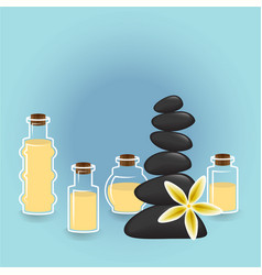 bottels of aroma oils for spa and massage masters vector image