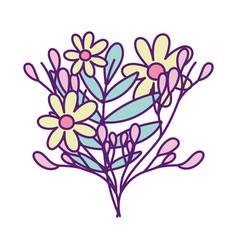 decorative flowers bouquet leaves branch ornament vector image