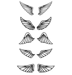 set of wings on white background design elements vector image