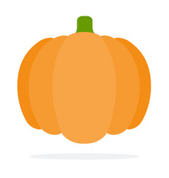 Whole pumpkin vector