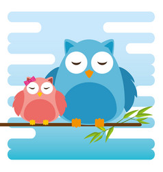 cute owls father and son characters vector image