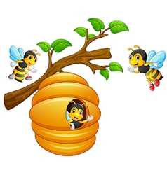 The bees fly out of a beehive hanging from a tree vector image vector image