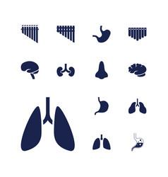 13 organ icons vector