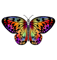Butterfly drawing in vivid colors in black outline vector