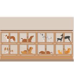cages of dogs and cats for sale in pet store vector image