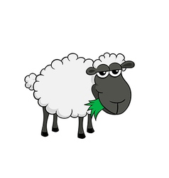 Cartoon of a cute sheep eating grass vector image
