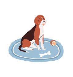 Cute dog sitting on carpet at home with puppy s vector