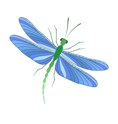 Dragonfly in flight vector