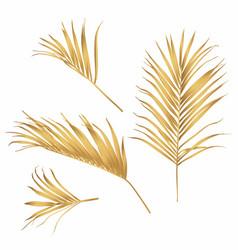 golden palm tree leaves line art vector image